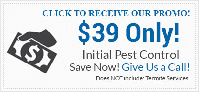 Preventive Pest Control Sauards Your Home And Business From Pests By Insuting A Protective Barrier System To Eliminate Issues Before They Occur